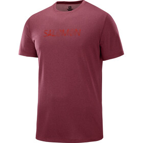Salomon Agile Graphic Running T-shirt Men red